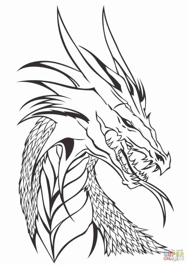 Best Picture Of Printable Dragon Coloring Pages Albanysinsanity Com Realistic Dragon Dragon Coloring Page Dragon Pictures