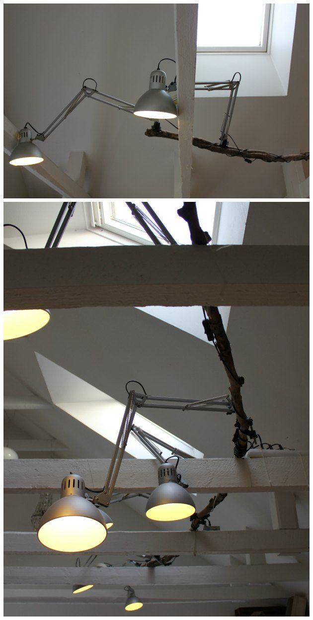 lang gren fra skoven brugt til at hænge arkitektlamper på - #anderledes #belysning