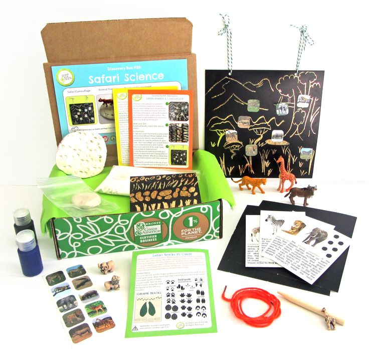 62 best safari science and craft projects images on pinterest for Best craft kits for kids