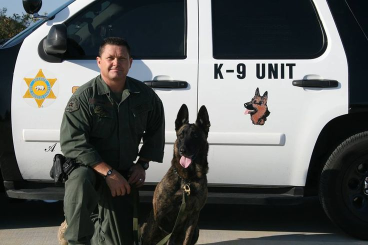 MPC / PSD Rocky (Cont.)  After his service with the United States Navy ended, he gave another 5 years of outstanding service as a police service dog with the Los Angeles Police Department.