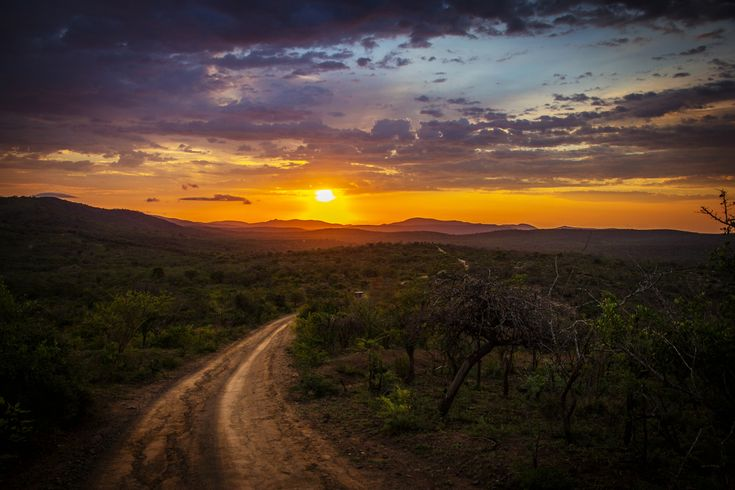 #Hluhluwe-Umfolozi Game Reserve, Hluhluwe, South Africa  #Canon - Canon EOS 60D, 1/4000s, f/4.5, 18mm, ISO 200