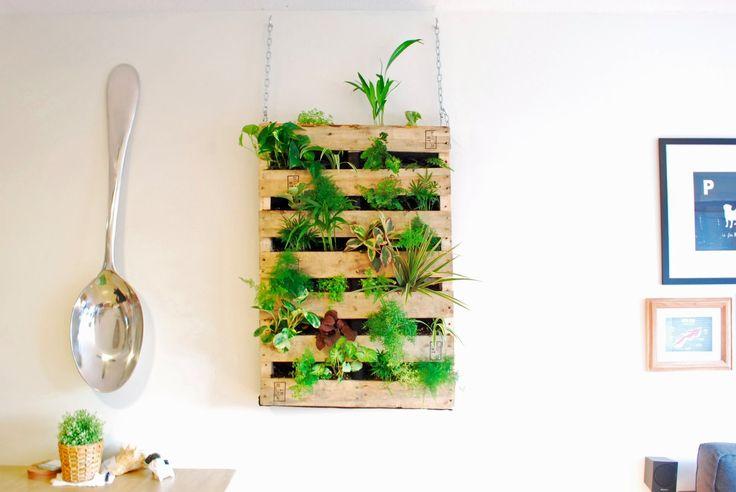 Pallet con plantas