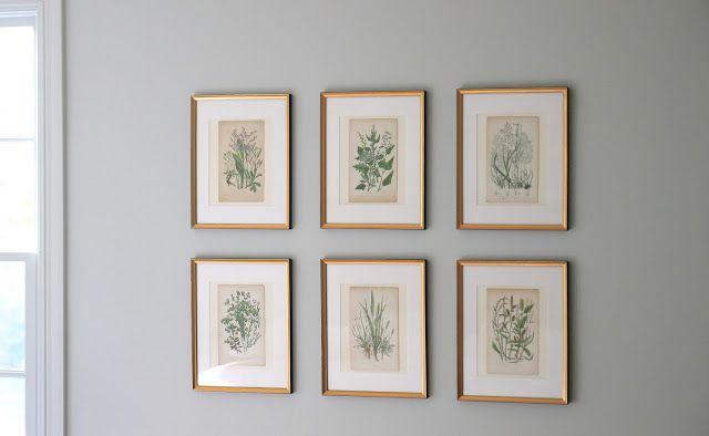 Jenny Steffens Hobick Framing Botanicals Antique Mirror