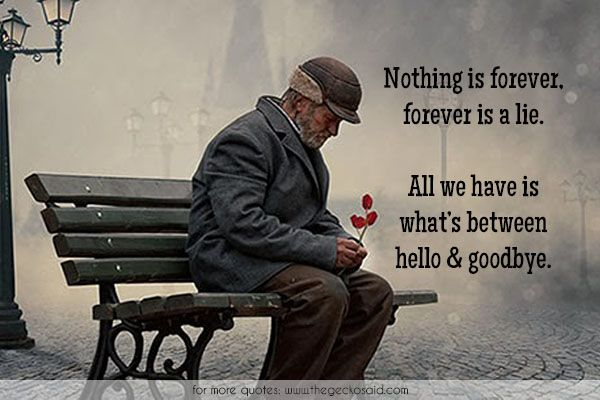 Nothing is forever, forever is a lie. All we have is what's between hello and goodbye.  #between #forever #goodbye #have #hello #lie #life #nothing #quotes
