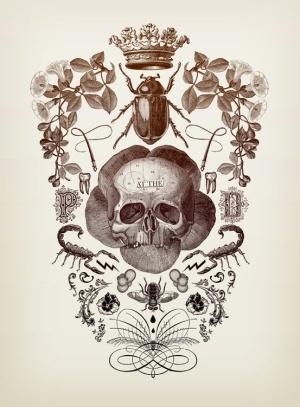 Illustration by Eduardo Recife by iva