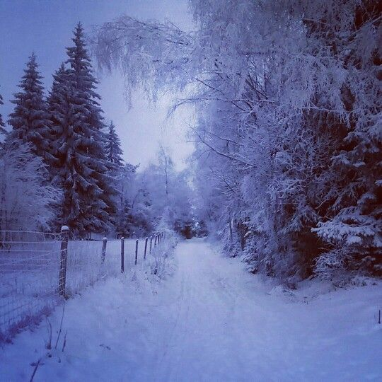 When is winter in Šumava