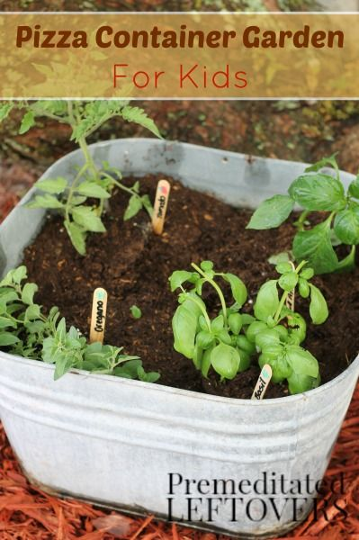 how to grow a pizza garden with kids growing a garden of pizza ingredients is - Vegetable Garden Ideas For Kids