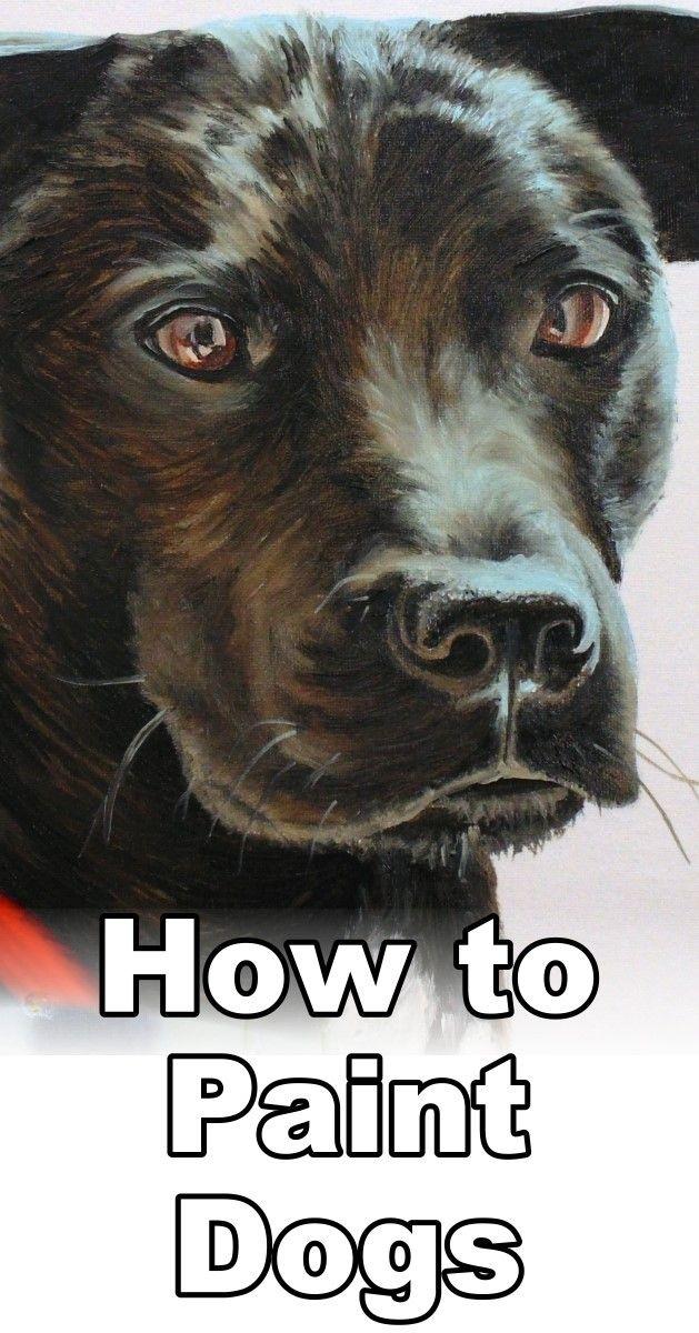 How to Paint Black Hair Animals (Dog) | Pet portrait paintings ...