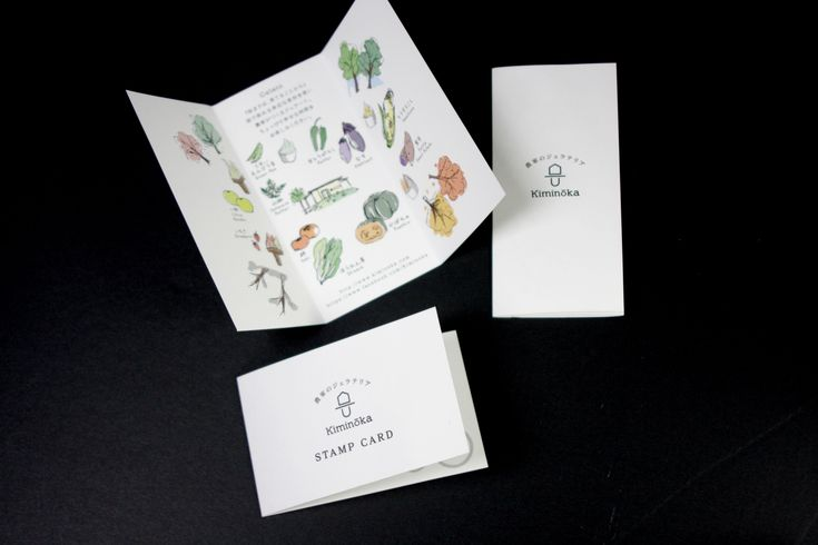 キミノーカ トータルデザインプロデュースロゴ ショップイメージ コンセプト リーフレット スタンプカード デザイン#パッケージデザイン #ブランディング #Packagedesign #Branding