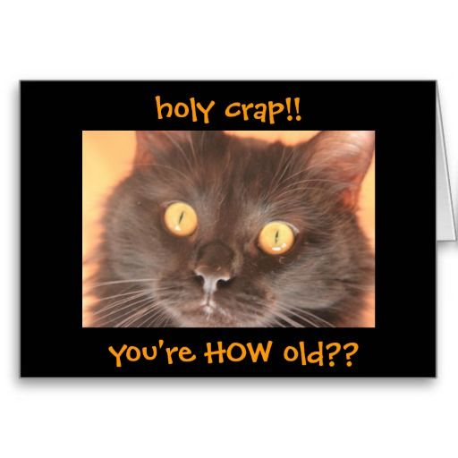 Funny Shocked Cat Birthday Card, Over the Hill #SOLD (many thanks!)