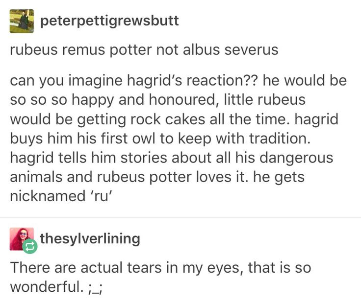 Albus Severus potter Rubeus Hagrid Remus Lupin Harry Potter Hogwarts the next generation
