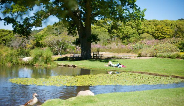Picnic spots for summer
