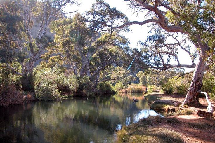 Burra Creek Gorge Image credit: Panaoramo