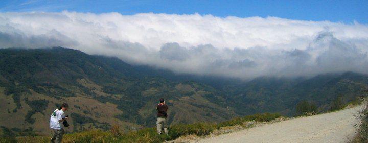 Monteverde Travel Guide