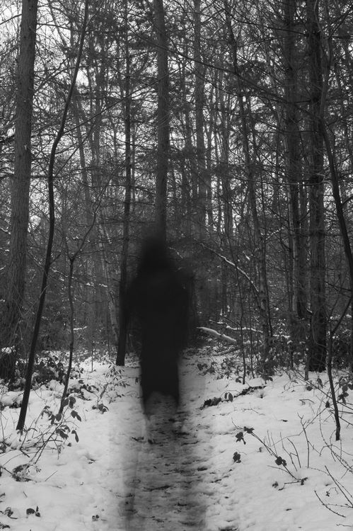 Even ghosts can't deal with their fucking families on the holidays and just Irish goodbye out into the cold dark woods bc there's some fucking peace and quiet there, at least.