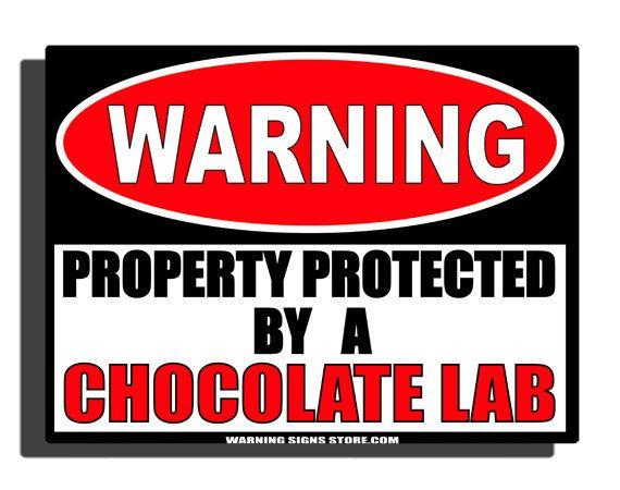 Funny Sign Chocolate Lab Humor Aluminum Sign