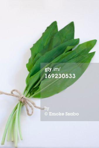 wild garlic by Emoke Szabo