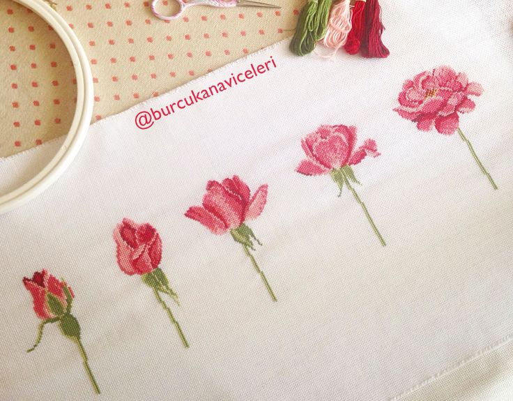 Açan Güller / Rose Cross Stitch