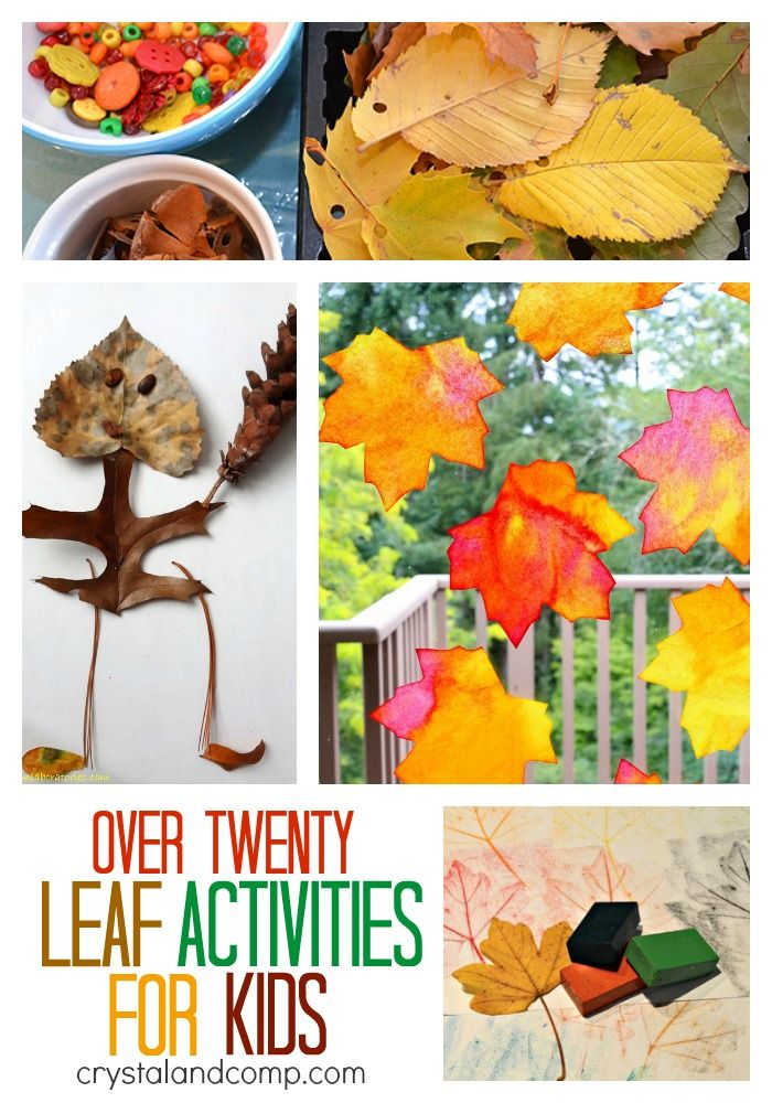 Fall is here and what better way to celebrate than to enjoy some fun leaf activities for kids!? We are so excited for crisp weather, changing colors of the leaves and walks outside. We've already s...