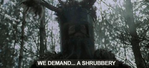 A Shurbery