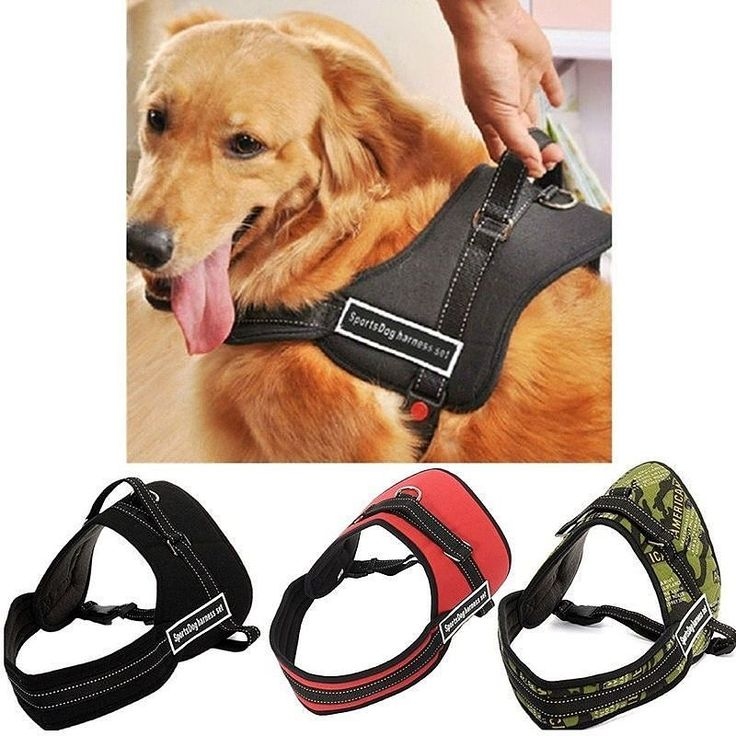 Dog Chest Harness  Description: material: soft cotton down jacket nylon canvas. color: england / leopard / army  Size (CM) S: chest 40-50 neck 46 M: chest 50-70 neck 54 L: chest 70-80 neck 64  Price: Dog Chest Harness = 180k  Order via WhatsApp 081910207000 & BBM 74BE013E.  #sayanganjing #anjing #anjingras #dog #doglover #mainananjing #eventanjing #aksesorisanjing #bajuanjing #dogclothes #dogaccessories #pecintaanjing #dogequipment #pet #petshop #hewanpeliharaan #hewan #shop…