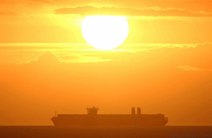 All sizes   Majestic Maersk   Flickr - Photo Sharing!