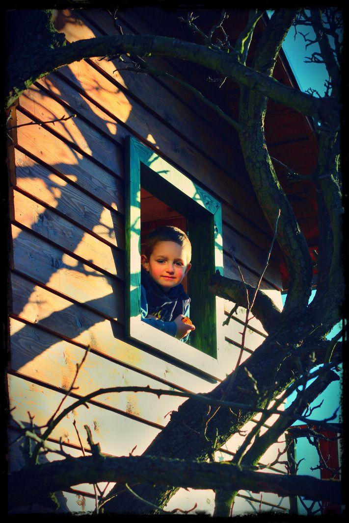 Domeček na stromě - tree house