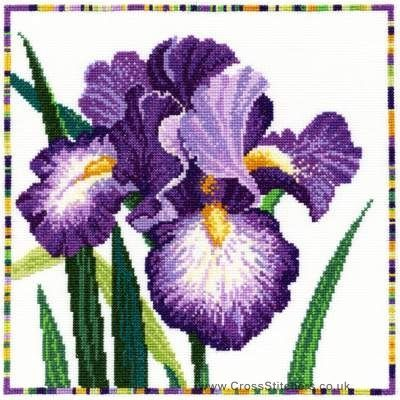 Iris - Garden Flowers Cross Stitch Kit from Bothy Threads