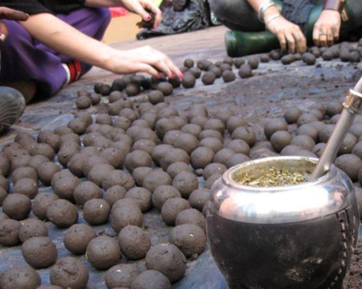 Bombas de Semillas: Agricultura Natural. Descubre como hacer las bombas de semillas de una manera sencilla y eficaz para sembrar en tu huerta o en terrenos.