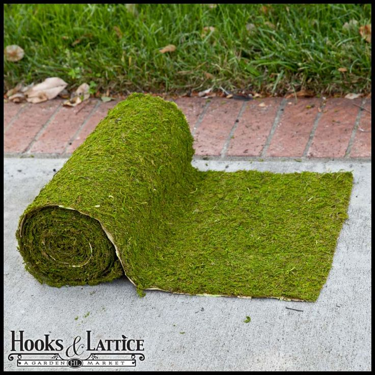 18in. Preserved Moss Roll - Choose Your Length