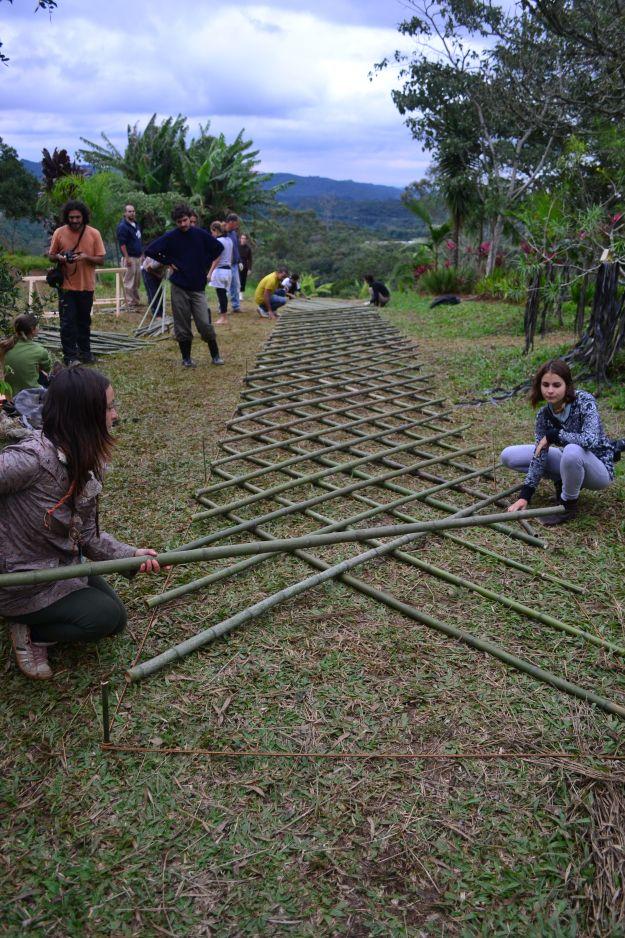 25 Melhores Ideias Sobre Cercas De Bambu Para Jardim No
