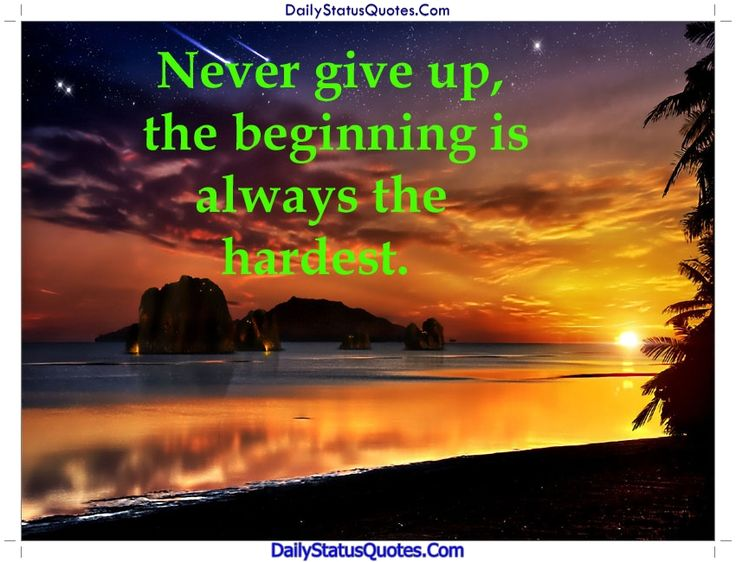 Never give up quotes  Daily Status Quotes