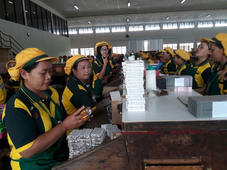 IKM Rokok Terpuruk, Bisnis Berlian Makin Naik Daun https://malangtoday.net/wp-content/uploads/2017/03/IMG-20170314-WA0017.jpg MALANGTODAY.NET – Awal 2017, industri kecil menengah (IKM) sektor rokok di Kota Malang mengalami penurunan. Tercatat hanya 35 pabrik saja yang beroperasi dari sebelumnya 155 pabrik pada tahun 2005. Sementara sektor kerajinan emas dan perak perhiasan terus naik daun. Kepala Dinas... https://malangtoday.net/malang-raya/kota-malang/ikm-rokok-terpuru