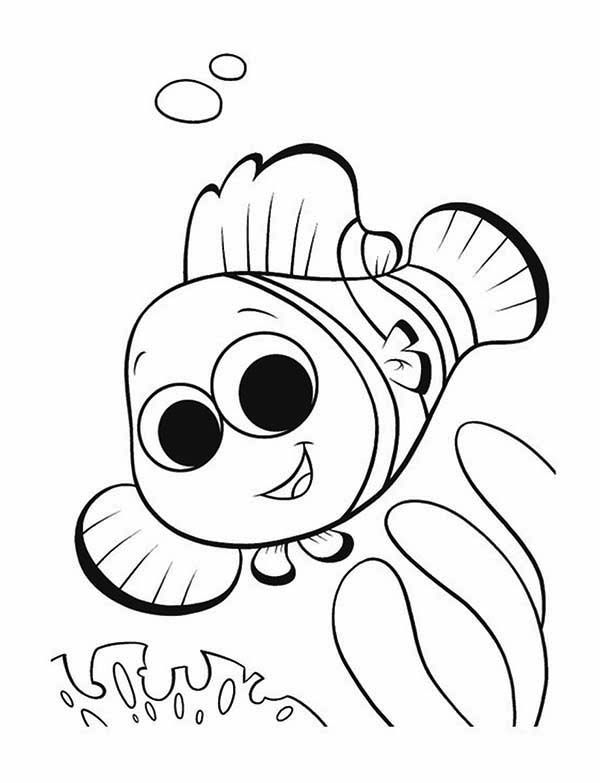 finding nemo coloring pages | Finding Nemo, : Cute Little Nemo in Finding Nemo Coloring Page