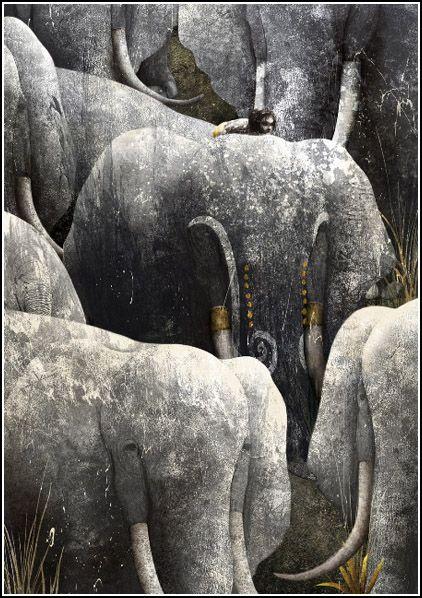 gabriel pacheco | Gabriel Pacheco. El libro de la Selva
