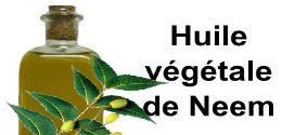 Huile de neem : Pour nous mais aussi pour nos animaux