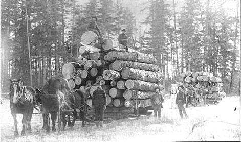 Old logging photos on the Snake River. Here Sandy McDougal rides on top of the load. Horses dragged these loads on iced tracks.