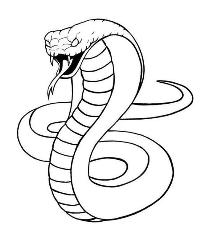 King Snake Coloring Pages In 2020 Snake Drawing Snake Coloring Pages Snake Painting