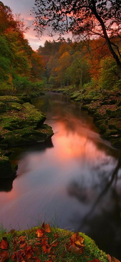 The Strid narrows of the River Wharfe at Bolton Abbey in the Yorkshire Dales, United Kingdom • Note: reworked but pretty image of the normally turbulent and deadly Strid