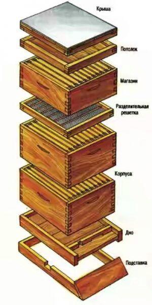 Классическая конструкция улья