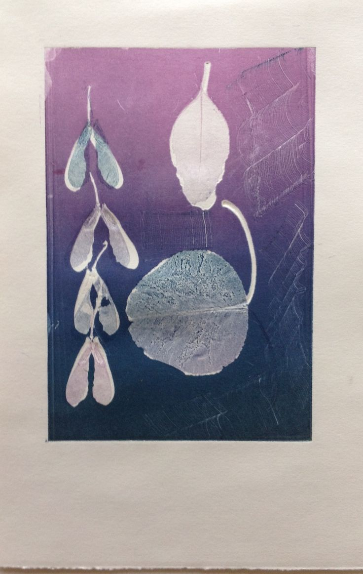 Still Life, leaves and pods: Monoprint on Stonehenge paper. Image size 12.5cm x 19cm