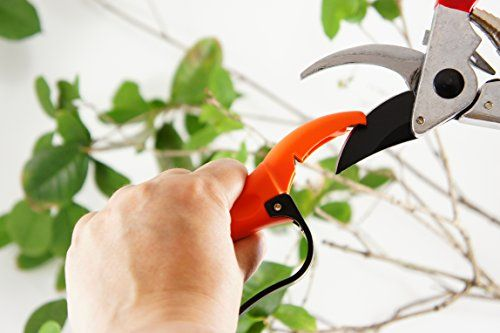 Check this awesome image  Q-yard  Handheld Multi-Sharpener for Pruning Shears, Garden Hand Pruners, Gardening Scissors ** Gardening DIY