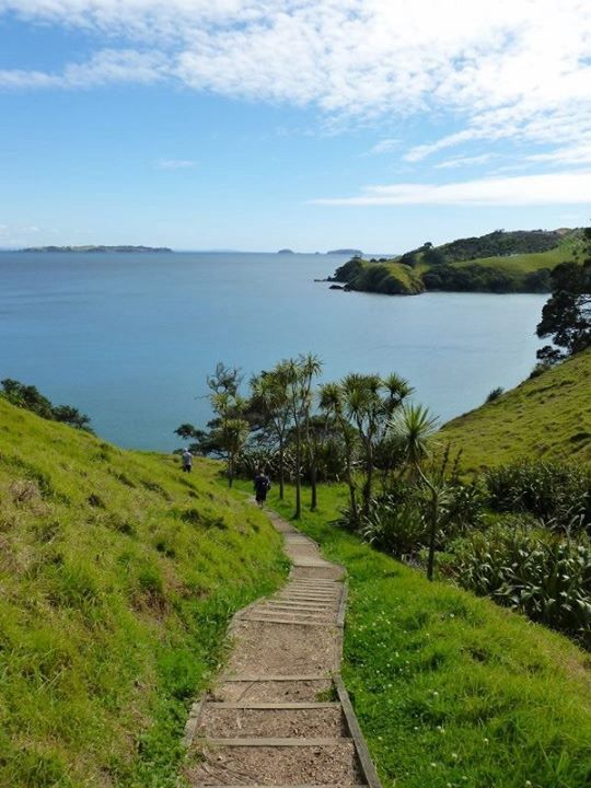 Matiatia Bay, Waiheke Island walk1, Auckland, The North Island, New Zealand