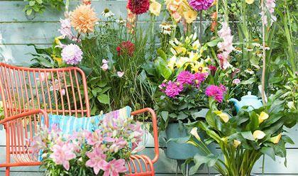 Een huis met een tuin, hoe heerlijk is dat!