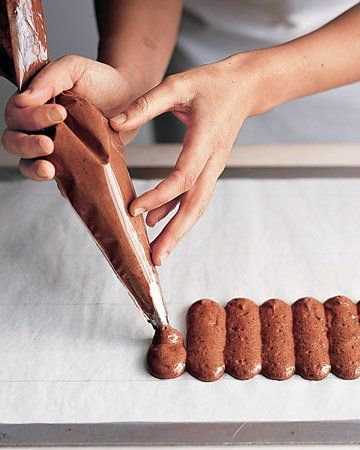 chocolate ladyfingers and cake rounds chocolate ladyfingers and cake ...