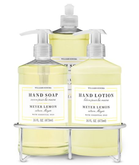 Dish Soap Hand Soap Lotion Set With Wire Caddy Meyer