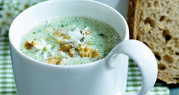 Opskrift på suppe med ramsløg | Agurkesuppe med ramsløg