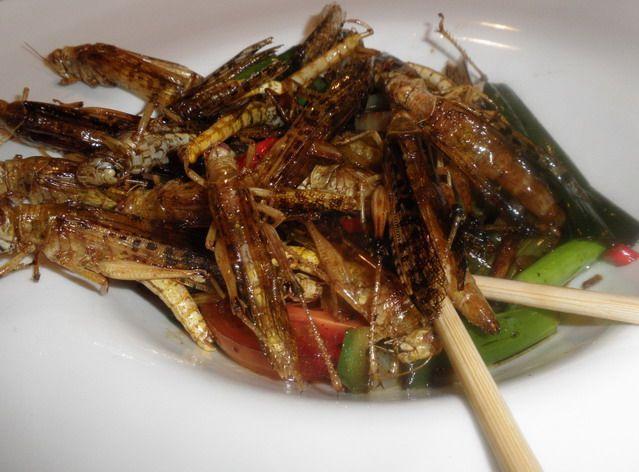 Sült szöcskék, www.foodandwine.hu Fotó: Csíki Sándor