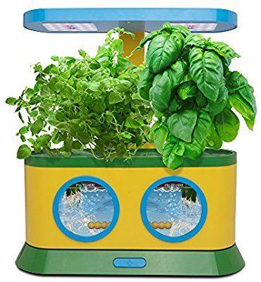 Amazon Com Aerogarden Herbie Kid S Garden With Pizza 640 x 480