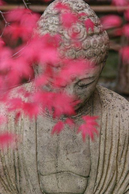 """""""Estoy decidido a practicar la escucha profunda. Estoy decidido a practicar el discurso amoroso."""" ~ Thich Nhat Hanh"""